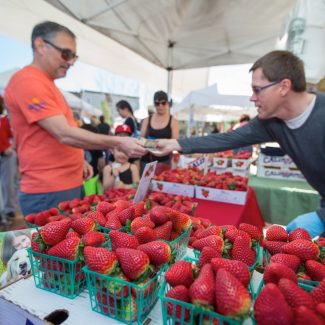 man buying strawberries at farmers market
