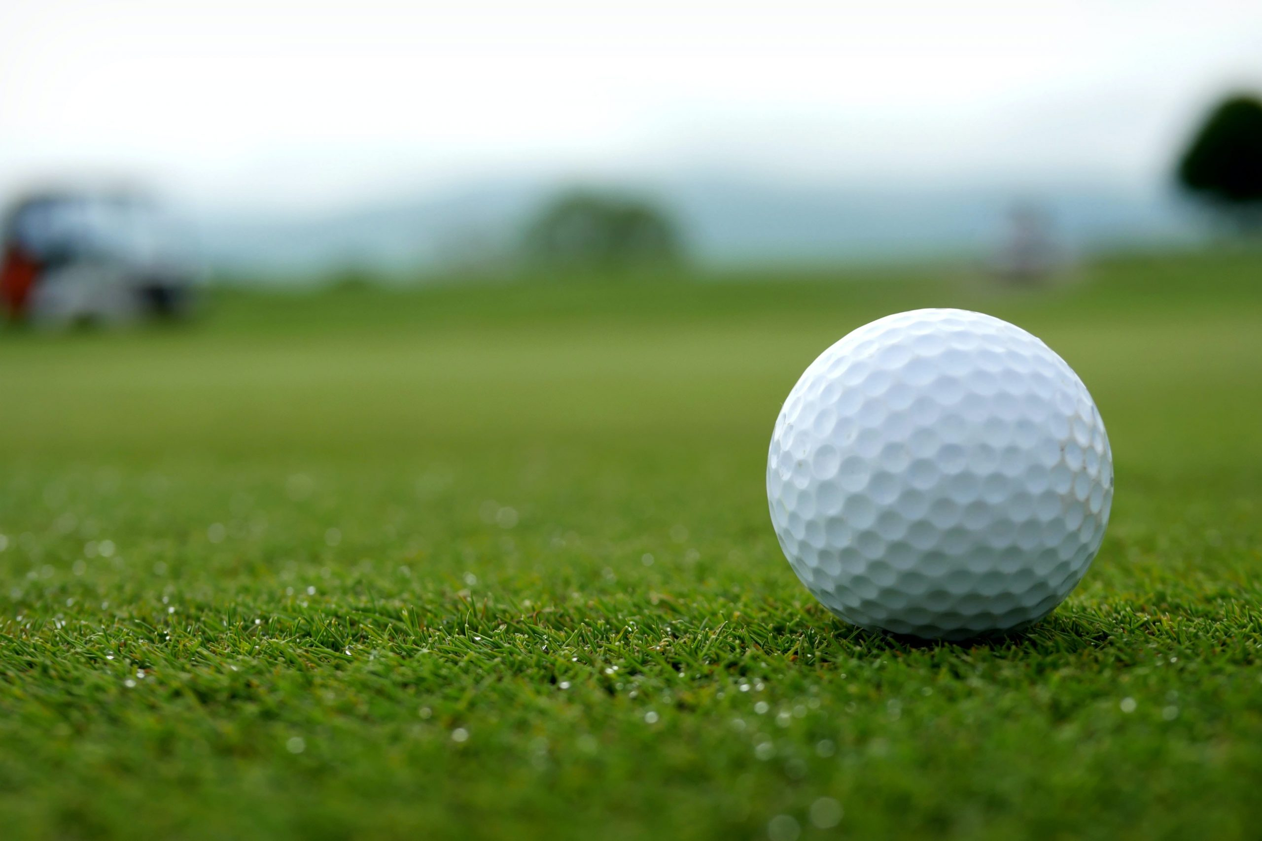 A golf ball sits on green grass