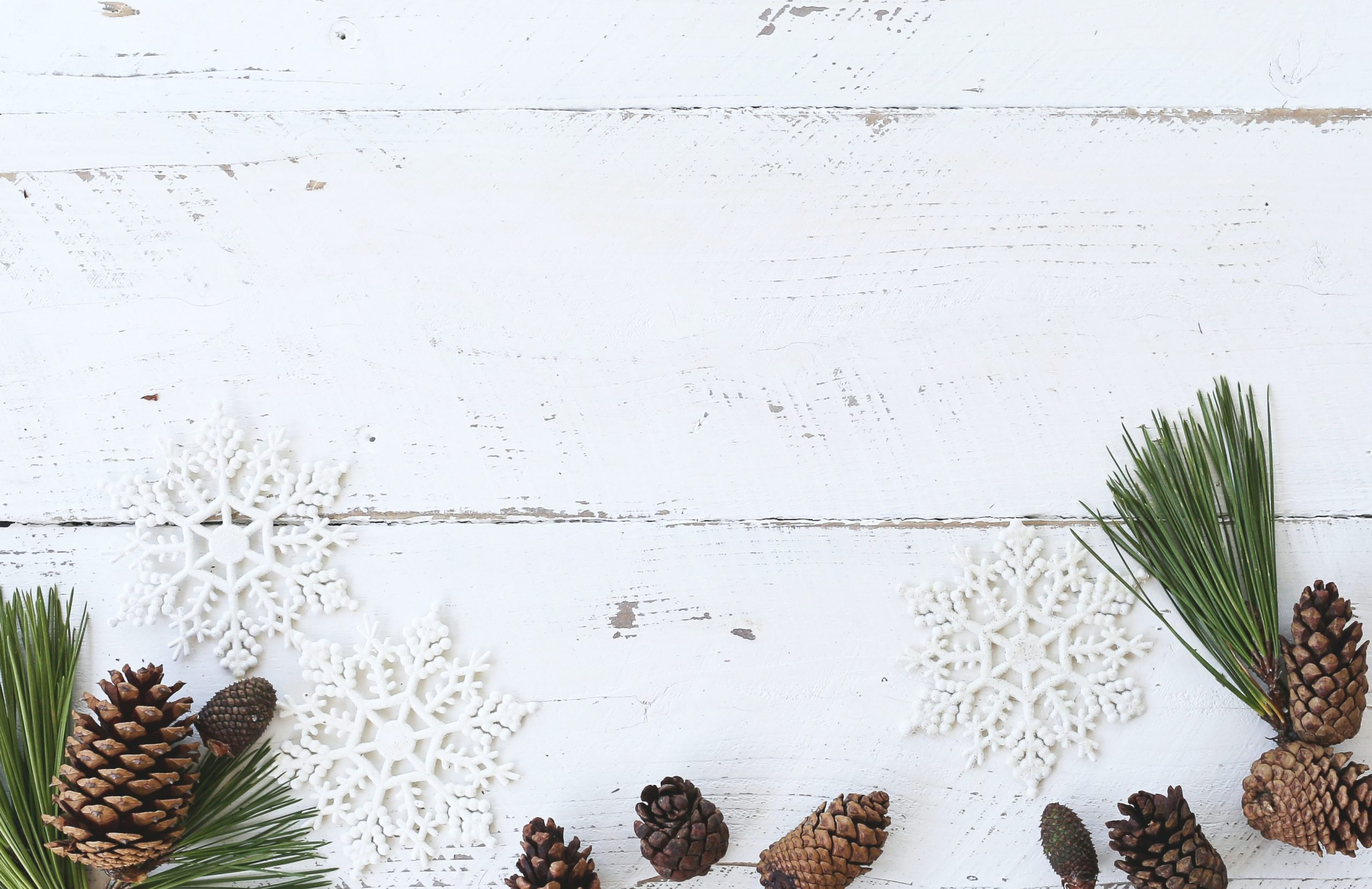 Pine cones and snowflakes on a white background.