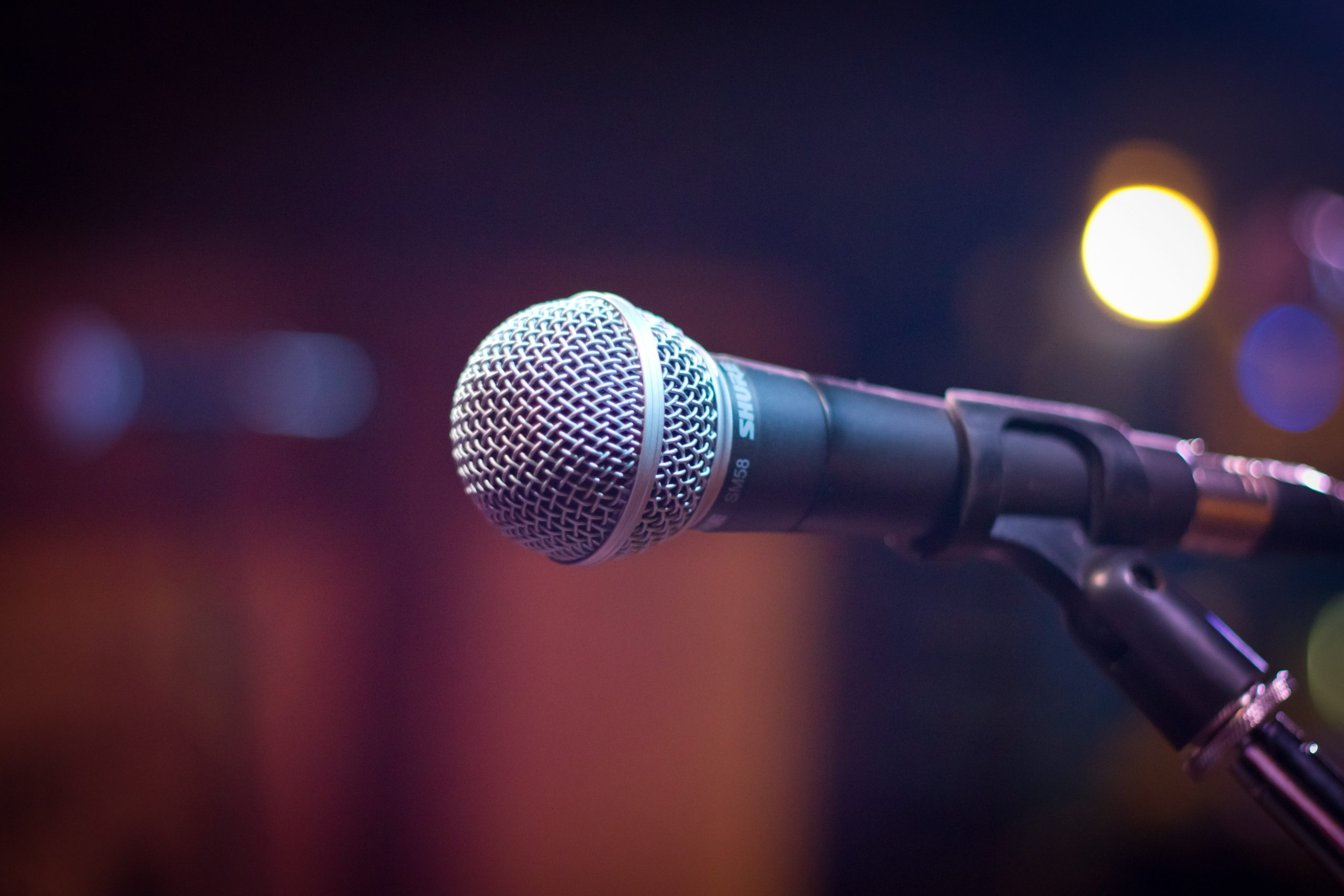A microphone on a mic stand.